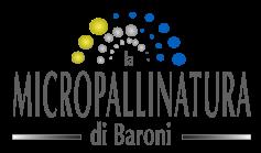 Micropallinatura